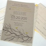 Environmental friendly wedding cards